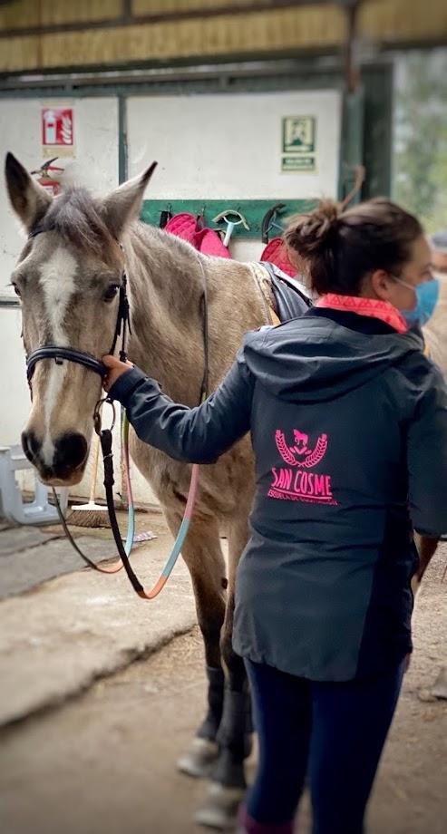 Foto Escuela Equitación San Cosme 18