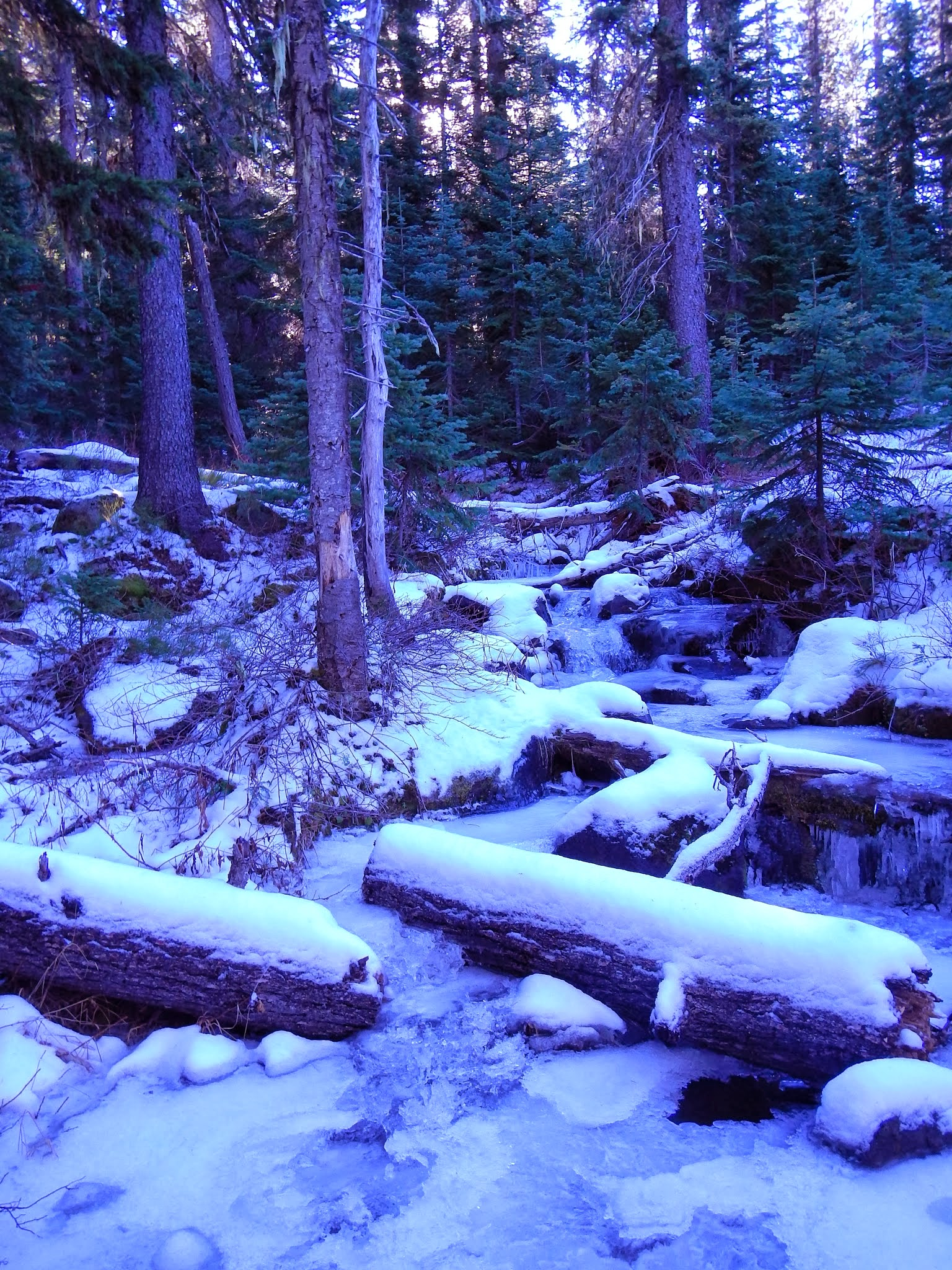 Photo: Icy river
