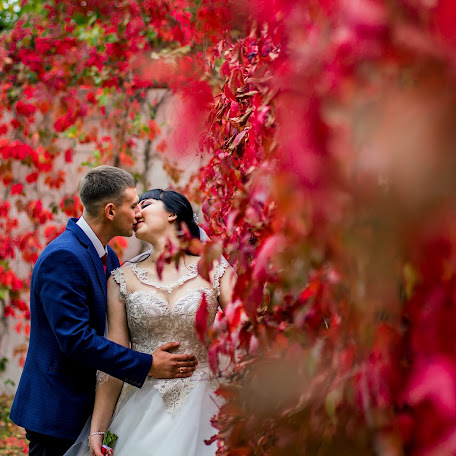 Wedding photographer Alina Afanasenko (Afanasencko). Photo of 28.10.2017