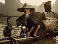 Aziatische visser in zijn bootje met 2 aalscholvers
