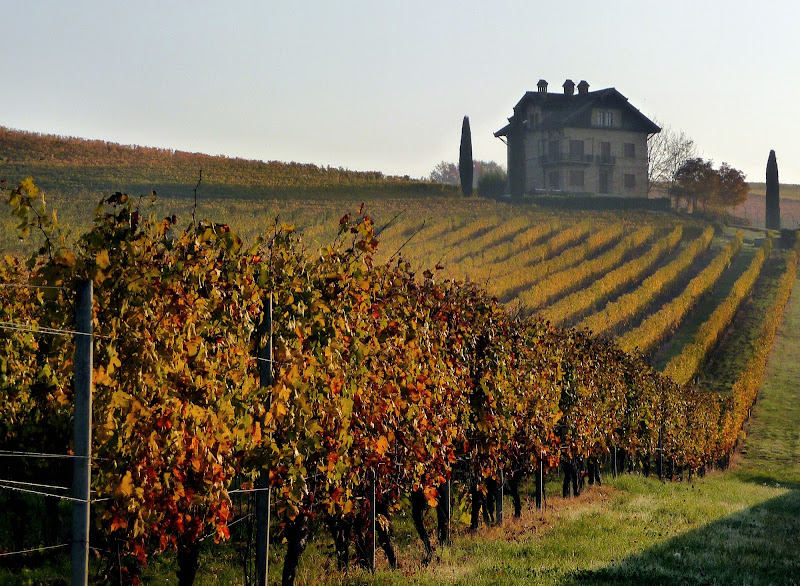 autunno nelle Langhe di smpaint