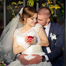 Wedding photographer Alena Shapar-Belik (AlenaArt). Photo of 29.12.2016