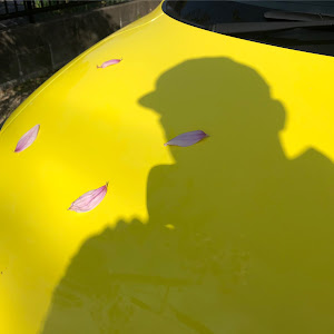 スイフトスポーツ ZC33Sのカスタム事例画像 カルパスさんの2020年11月27日11:03の投稿