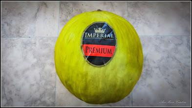 Photo: Pepene galben (Cucumis melo) - din comert - 2017.02.12
