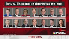 Trump on Trial thumbnail