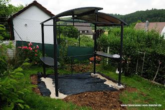 Photo: die Füße sind fest, jetzt wird etwas gepflanzt....