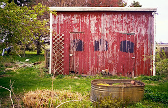Photo: Red Shed