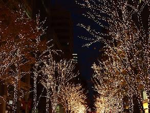 Photo: 丸の内 ライトアップ