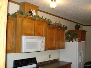 Photo: Lots of cabinet space..greenery is equipped with lights.