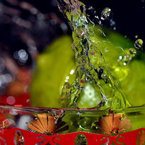 splash  by Paul Wante - Abstract Water Drops & Splashes ( abstract, splash, waterdrops, lemon,  )