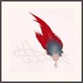 純血の羽冠