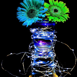 Flowers And Light by Russell Mander - Abstract Patterns