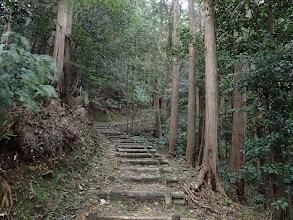 階段は続く