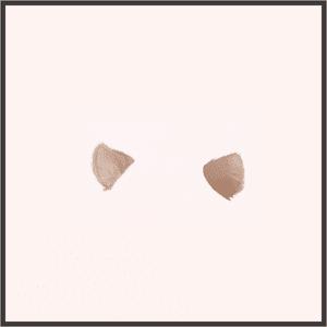 ボクの猫耳