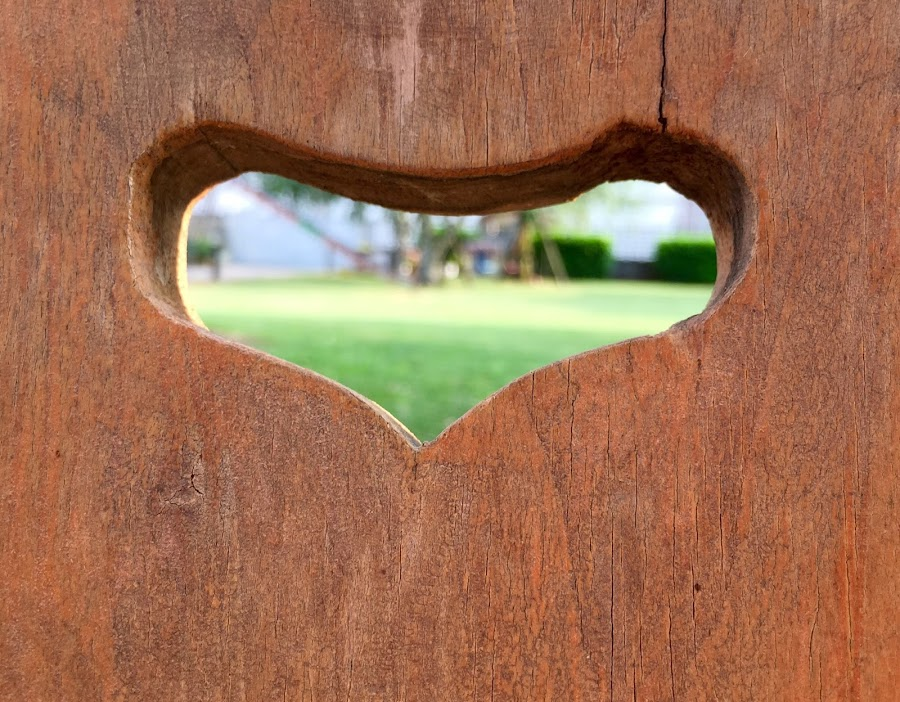 Heart! by Enry Ci - Wedding Other ( love, sentiment, wood, feeling, abstract, heart )