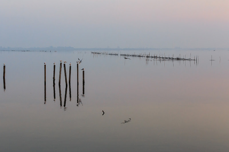 Laguna velata... di prometeo