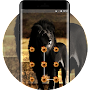 theme wallpaper lion black mane rock skul demon APK icon