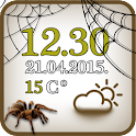Spider Clock And Weather icon
