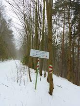 Photo: Wir folgen dem Weg, der rechts von der Forststraße abgeht.