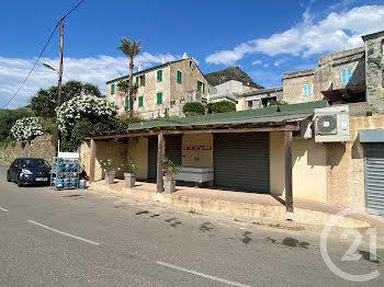 locaux professionels à Morsiglia (2B)