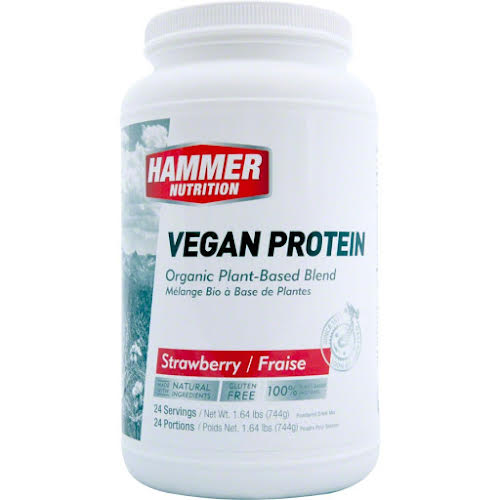 Hammer Nutrition Vegan Protein Mix: Strawberry 24 Servings