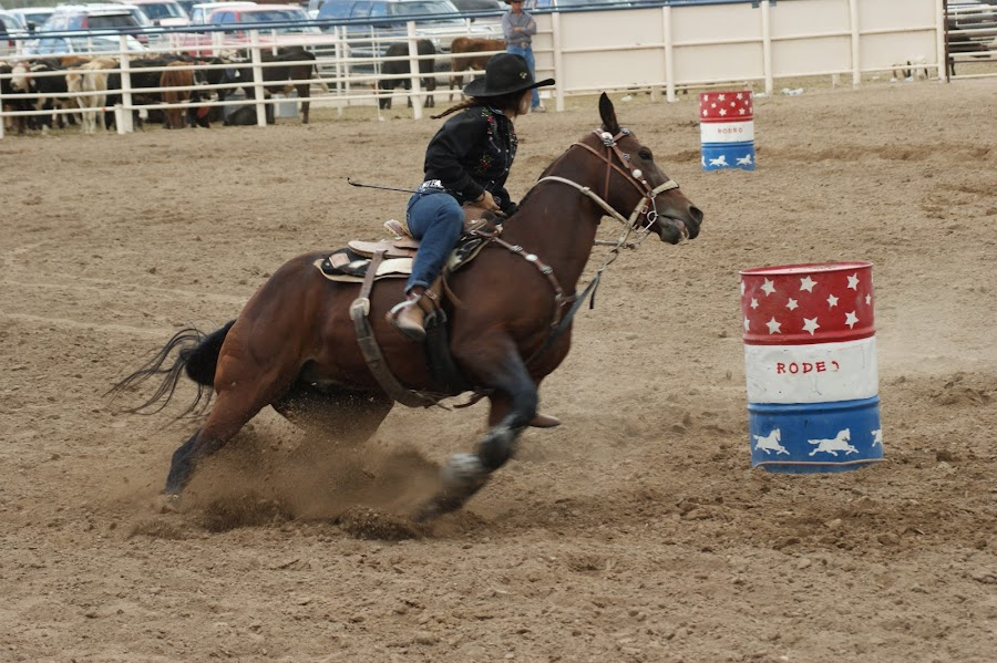 Horse and rider are one.... by Charles Prichard - Sports & Fitness Rodeo/Bull Riding ( iphoto original,  )