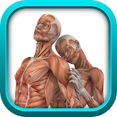 PHYSIOLOGY TEST PREP GAME APP