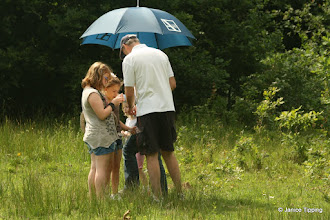 Photo: Martin Hall, entomologist, looks at some of the children's finds on the bug hunt