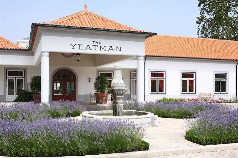 The Yeatman