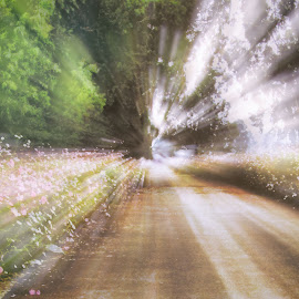 Road by Marissa Enslin - Digital Art Things