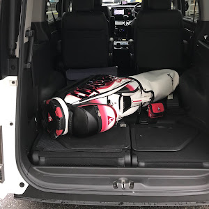 ステップワゴン RP3 クールスピリット・2015のカスタム事例画像 ルカサーさんの2018年09月19日13:17の投稿