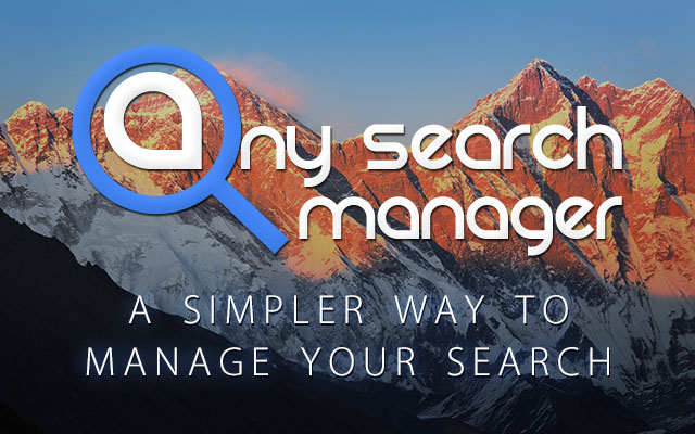 Any Search Manager DS