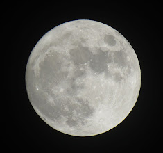 Photo: Full Cold Moon. Next Full Moon on Christmas Eve is 2034, last one was 1977.