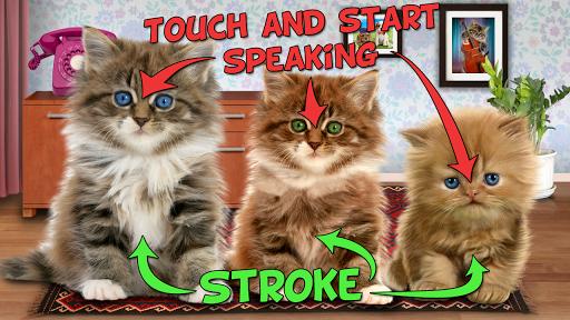 Talking cats 2