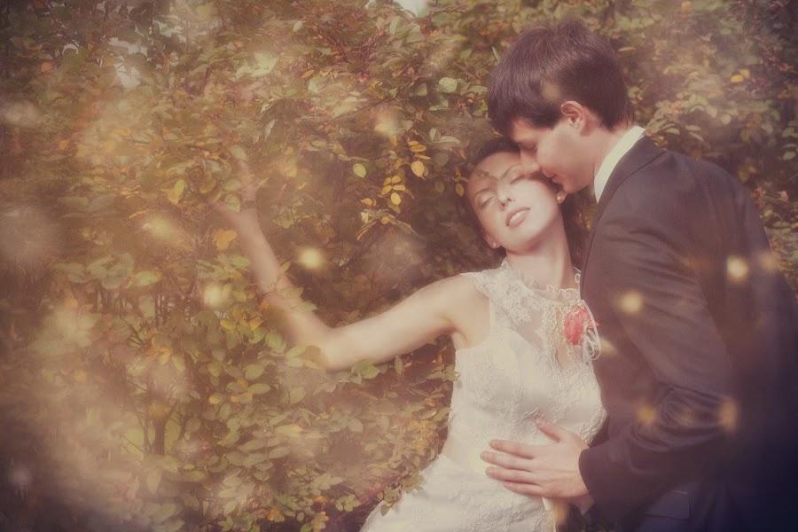 Hochzeitsfotograf Nadezhda Sorokina (Megami). Foto vom 10.03.2016