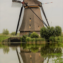 UNESCO Mildmill Sight by Lisa Faith-Gregg - Buildings & Architecture Public & Historical ( water, reflection, sky, flowers, canal, unesco, windmill )