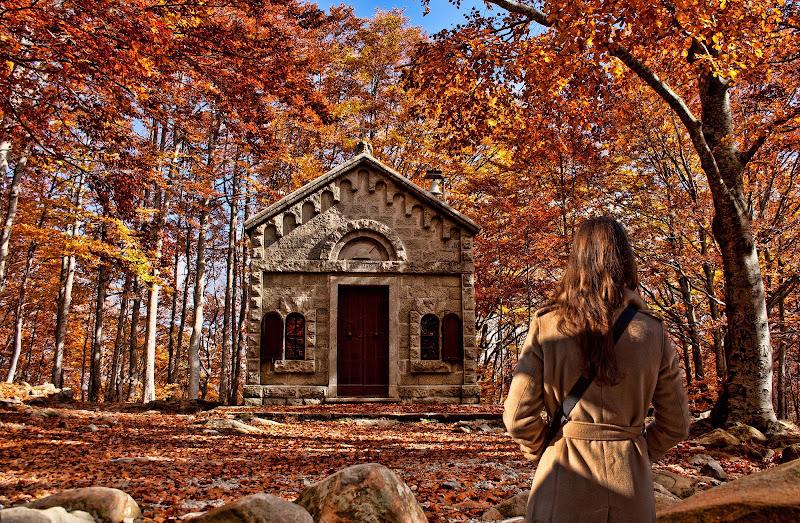 I colori dell'autunno.. di Gianluca Presto