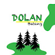 Dolan Download on Windows