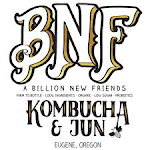 BNF Kombucha Strawberry Mint