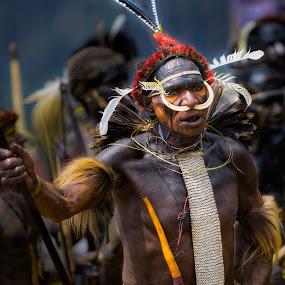 Papua Warrior by Indrawaty Arifin - People Street & Candids ( papua, koteka, tribe, man )