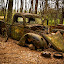 Final Resting Place by Dan Bartlett - Transportation Automobiles ( rust, georgia, green, truck, woods, forgotten, abandoned, trees,  )