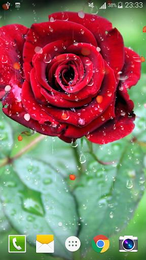 Rose Raindrop Live Wallpaper  screenshots 5