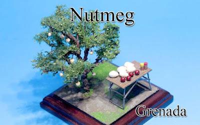 Nutmeg -Grenada-