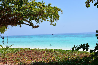 Relax in the shadow of Banyan trees on Koh Rok Nai