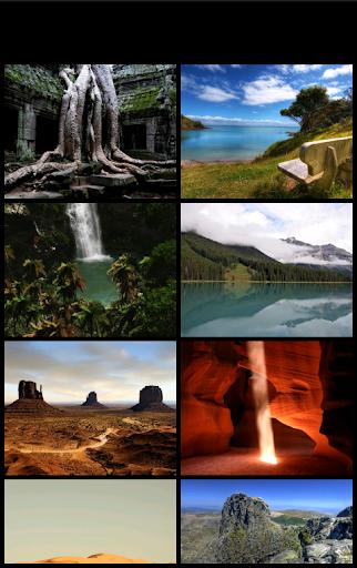 写真自然の写真