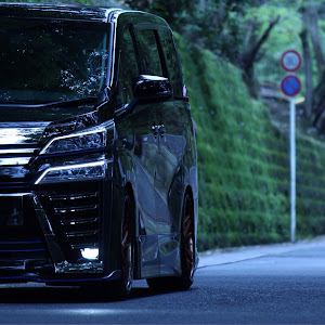 ヴェルファイア AGH30W 後期 Z-Gエディションのカスタム事例画像 あいうえ太田さんの2020年07月05日22:33の投稿