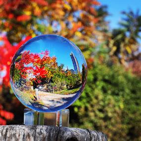 Autumn  by Aurelio Firmo - Artistic Objects Glass ( autumn )
