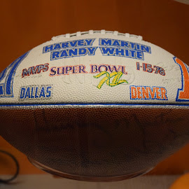 by Janet Blackwell Wilson - Sports & Fitness American and Canadian football (  )