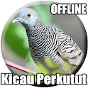 Suara Burung Perkutut Lokal Mp3 icon