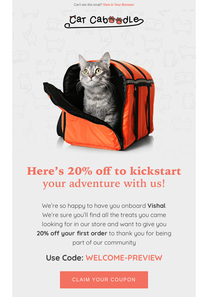 Email Marketing for Shopify: Cat Caboodle